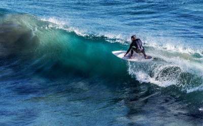 FESI expands its membership base to surf industry manufacturers