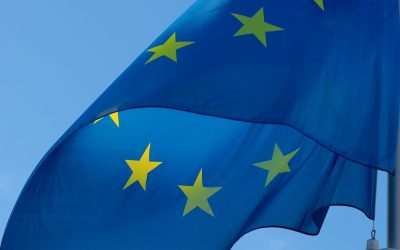 FESI welcomes the new EU Generalised scheme of preferences and calls for a fair, transparent, and legally predictable legal framework